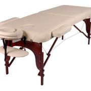 BAS идеально подойдет для: - любого вида массажных практик; - работы с беременными женщинами; - работы с пациентами с ограниченной подвижностью; - лимфо-массажа; - процедур косметологической направленности; - массажных и косметологических салонов и кабинетов, салонов красоты, массажных зон фитнес-залов и тренажерных центров, СПА салонов, салонов пирсинга и татуажа.